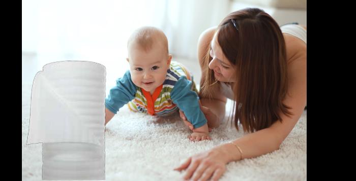 img-proteccion-para-alfombras